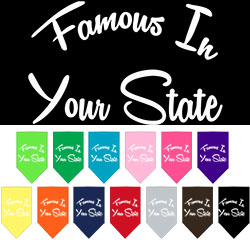 Famous in Arkansas Screen Print Souvenir Pet Bandana
