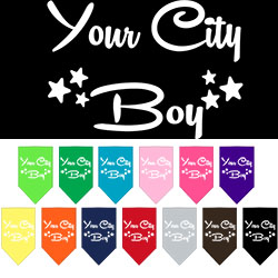 Washington D.C. Boy Screen Print Souvenir Pet Bandana