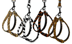 Animal Print Step In Dog Harness
