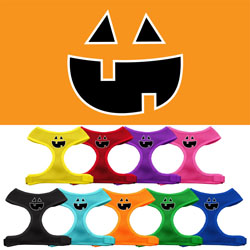 Pumpkin Face Design Soft Mesh Harnesses