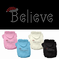 Believe Rhinestone Pet Hoodies
