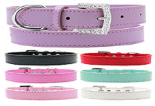 Wichita Plain Dog Collar