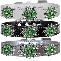 Green Poinsettia Halo Croc Dog Collar