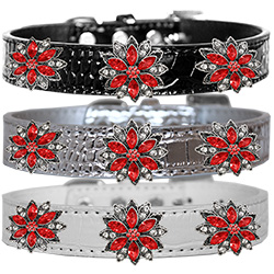Red Poinsettia Halo Croc Dog Collar