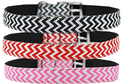 Nylon Buckle Collars