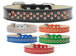 Sprinkles Ice Cream Dog Collar Orange Crystals