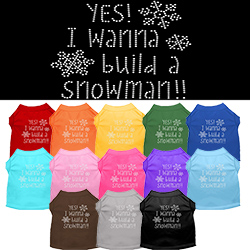 Yes! I want to build a Snowman Rhinestone Pet Shirt