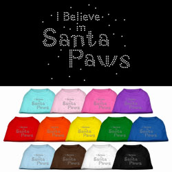 I Believe in Santa Paws Shirt