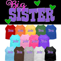 Big Sister Screen Print Dog Shirt