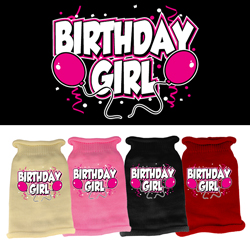 Birthday Girl Screen Print Knit Pet Sweater
