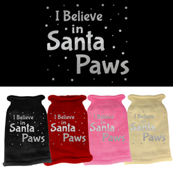 I Believe in Santa Paws Screen Print Knit Pet Sweater
