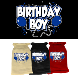 Birthday Boy Screen Print Knit Pet Sweater