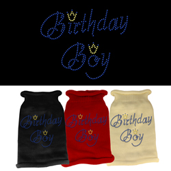 Birthday Boy Rhinestone Knit Pet Sweater