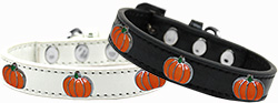 Pumpkin Widget Dog Collar