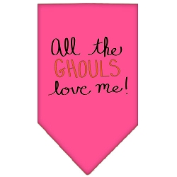 All the Ghouls Screen Print Bandana Bright Pink Small