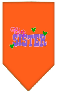 Big Sister Screen Print Bandana Orange Small