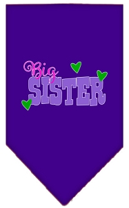 Big Sister Screen Print Bandana Purple Small
