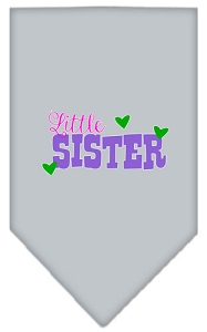 Little Sister Screen Print Bandana Grey Small