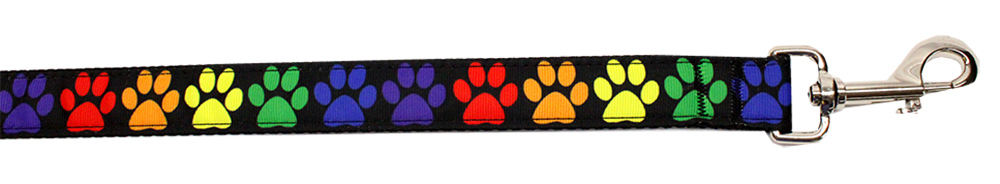 Rainbow Paws Nylon Pet Leash 5/8in by 4ft
