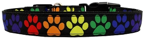 Rainbow Paws Nylon Dog Collar SM Wide