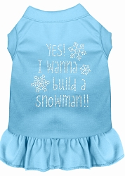 Yes! I want to Build a Snowman Rhinestone Dog Dress Baby Blue XS (8)