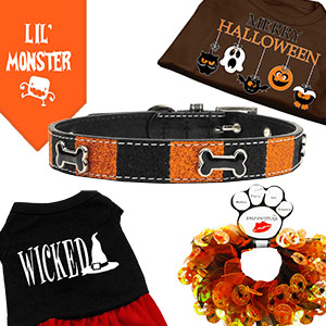 Halloween Pet Supplies