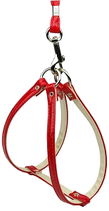 Faux Snake Skin Step In Harness Red 10