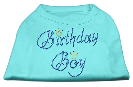 Birthday Boy Rhinestone Shirts Aqua XL