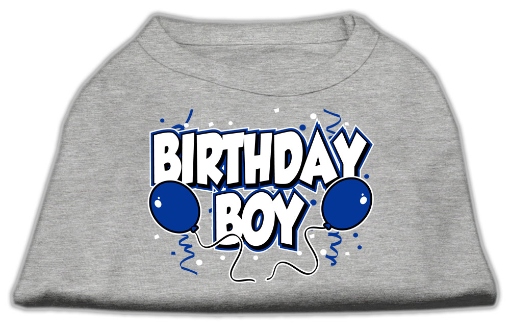 Birthday Boy Screen Print Shirts Grey XS