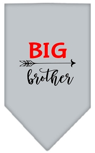 Big Brother Screen Print Bandana Grey Large