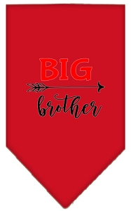Big Brother Screen Print Bandana Red Small
