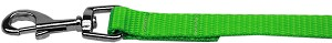 Plain Nylon Pet Leash 5/8in by 4ft Hot Lime Green