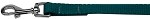 Plain Nylon Pet Leash 3/8in by 4ft Teal