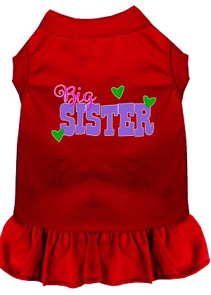 Big Sister Screen Print Dog Dress Red Sm