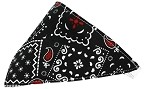 Black Western Bandana Pet Collar White Size 10