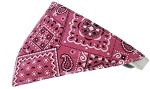 Bright Pink Western Bandana Pet Collar White Size 10