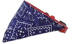 Purple Western Bandana Pet Collar Red Size 10