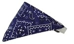 Purple Western Bandana Pet Collar White Size 10