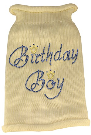 Birthday Boy Rhinestone Knit Pet Sweater XS Cream