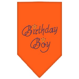 Birthday Boy Rhinestone Bandana Orange Small