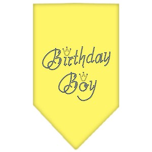 Birthday Boy Rhinestone Bandana Yellow Small