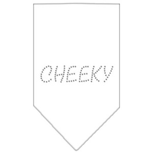 Cheeky Rhinestone Bandana White Small