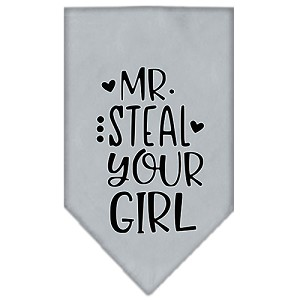 Mr. Steal Your Girl Screen Print Bandana Grey Large