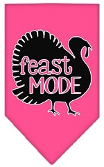 Feast Mode Screen Print Bandana Bright Pink Small