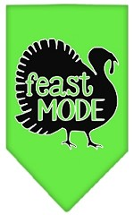 Feast Mode Screen Print Bandana Lime Green Small