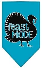 Feast Mode Screen Print Bandana Turquoise Small