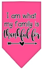 I Am What My Family is Thankful For Screen Print Bandana Bright Pink Small