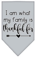 I Am What My Family is Thankful For Screen Print Bandana Grey Small