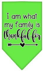 I Am What My Family is Thankful For Screen Print Bandana Lime Green Small