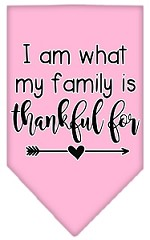 I Am What My Family is Thankful For Screen Print Bandana Light Pink Small
